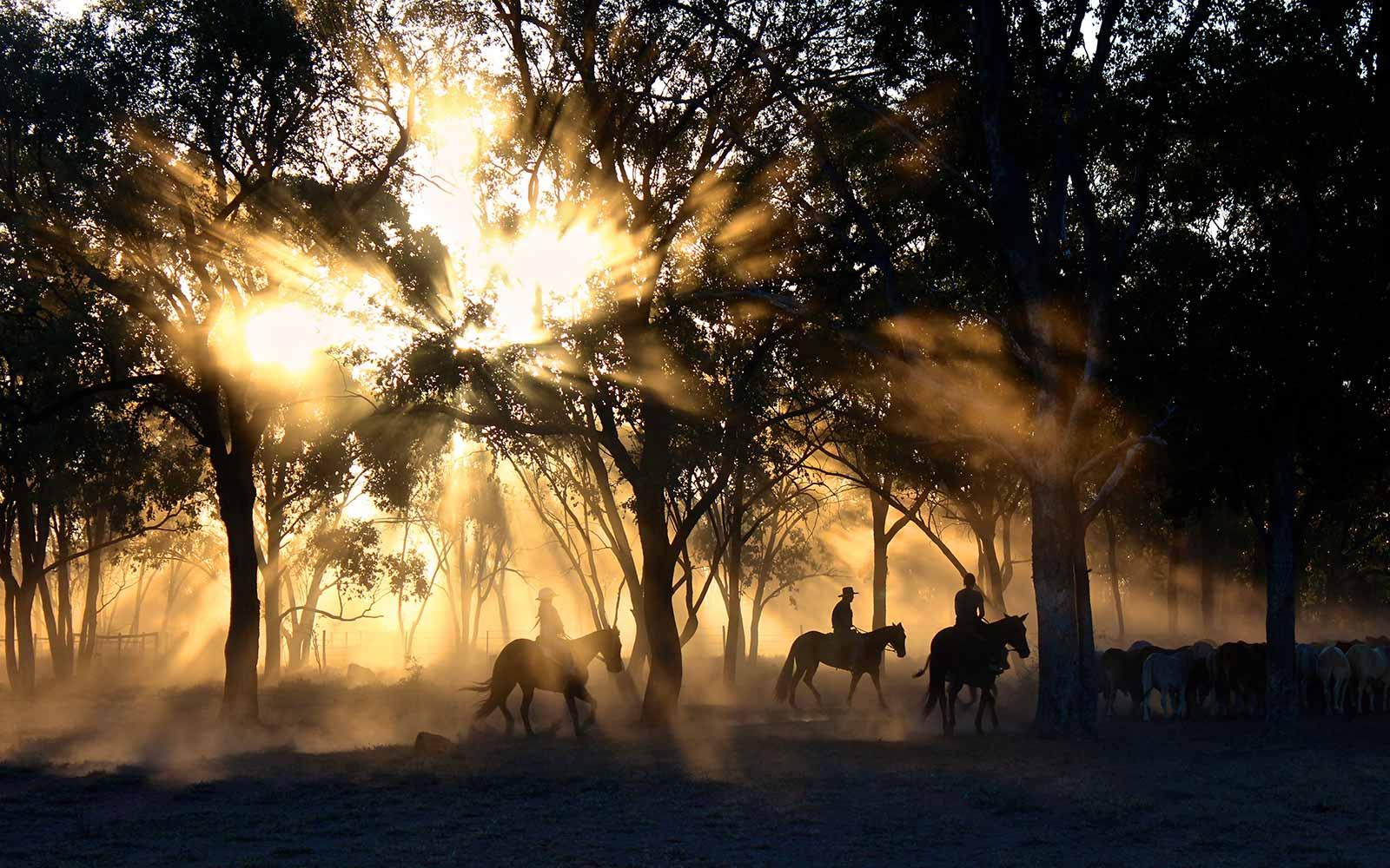 Have an adventure. People on Horseback by photographer Tobias Keller